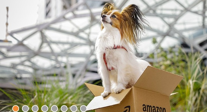 Quickie Case Study: Why Amazon Is Top Dog