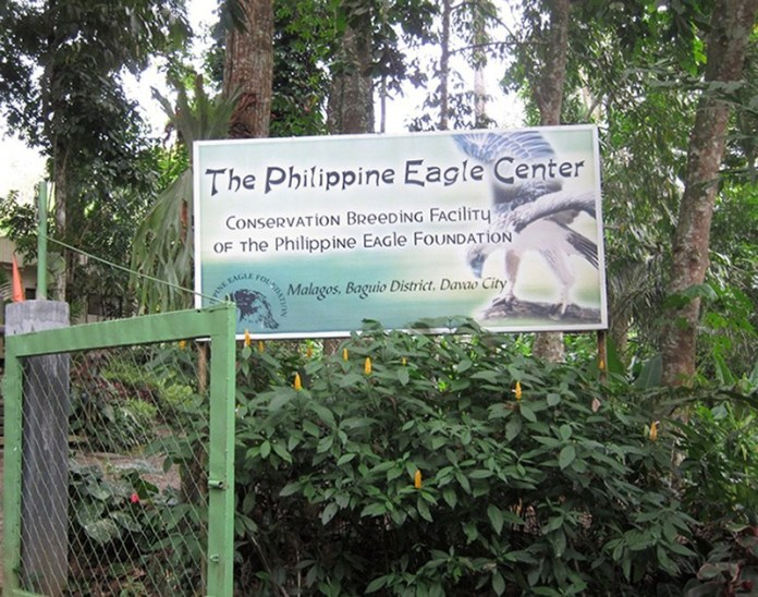 Philippines Eagle Center Davao