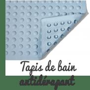 Tapis de bain antidérapant pour chien