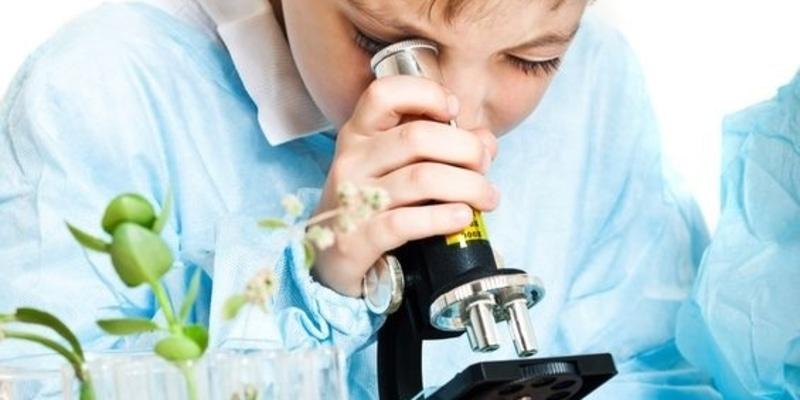 SCIENCE Biologie Observation au microscope, découverte de l'ADN, excursion chez les insectes, fonctionnement du corps humain, secrets et mystères du vivant.