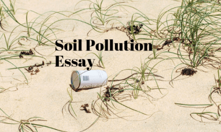 Soil Pollution Essay in English