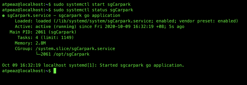 Starting and checking the status of the go app service on Ubuntu with systemctl