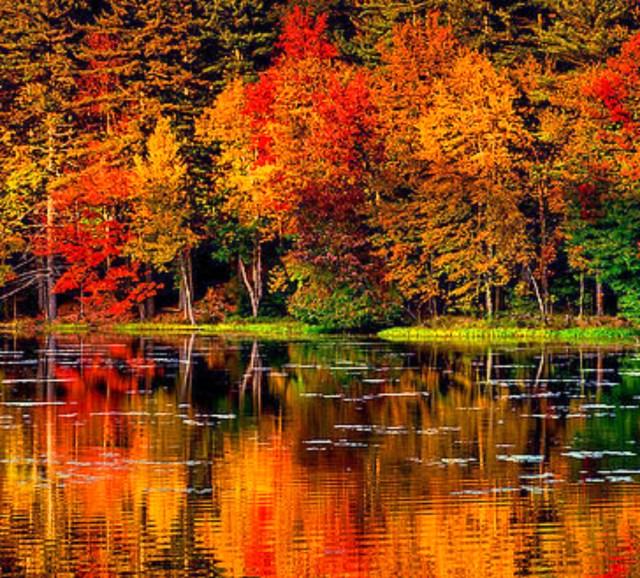 fall-foliage-new-hampshire-_fotor