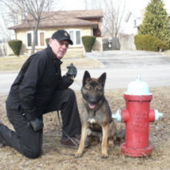 Accelerant Detection Dog Exclusive