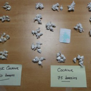 Cocaine Detection Dogs
