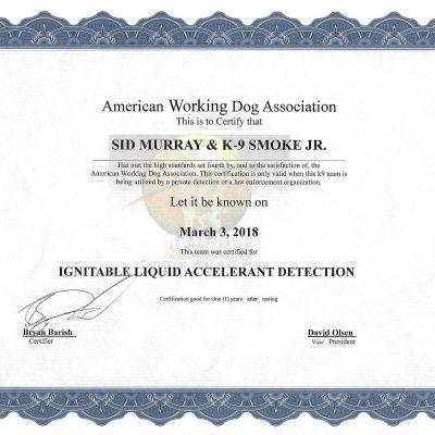 Accelerant Detection Dog