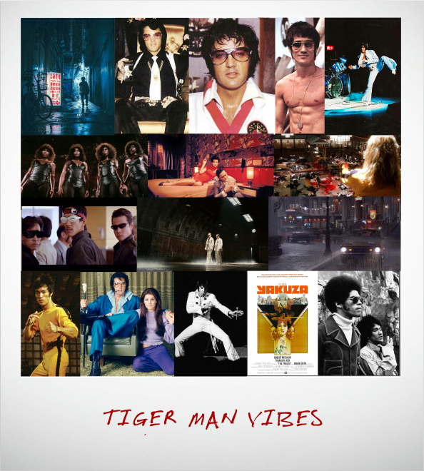 Support the Most Bad-Ass, Kung-Fu Flick Elvis Presley Never Made! TIGER MAN on Indiegogo