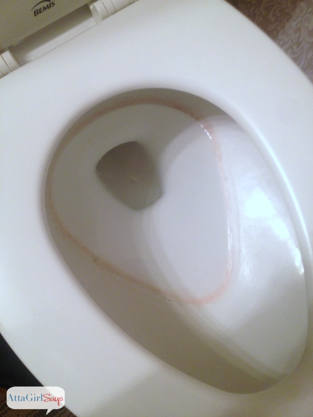 What's that Pink Stuff in my Toilet Bowl? – GoodWaterGuy