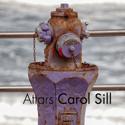 front cover for the book ATTARS by Carol Sill