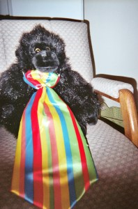 """Harry is wearing his rainbow tie. He loves the Rainbow of Learning!"""