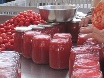 Image result for tomato sauce making