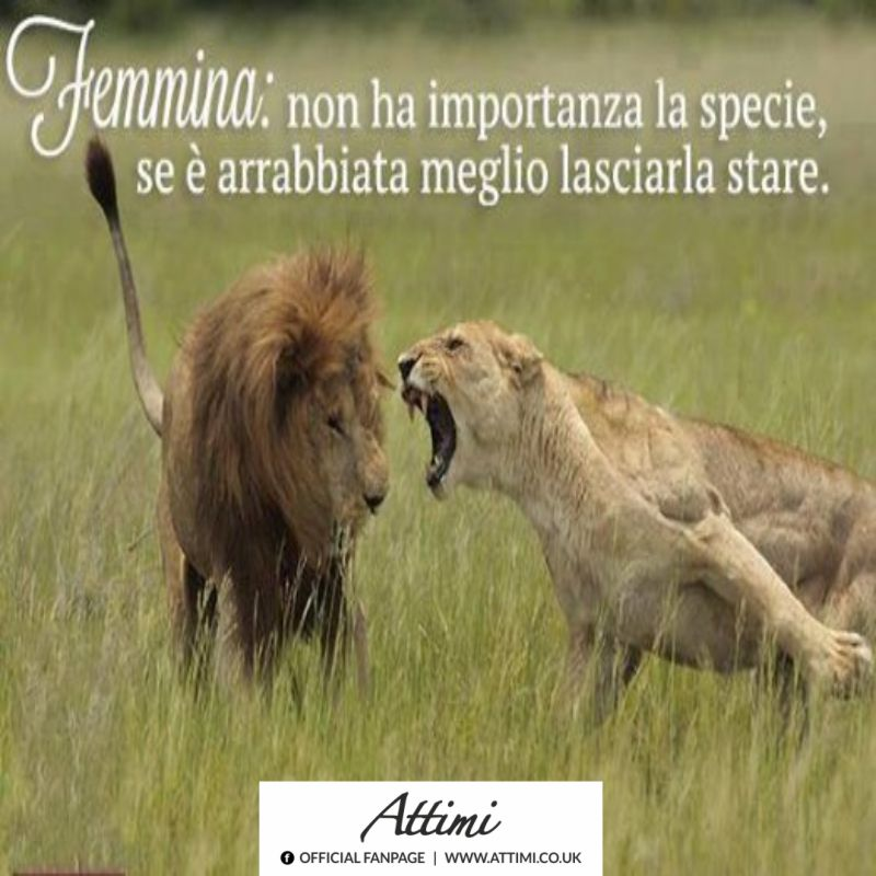 Femmina: non ha importanza la specie …