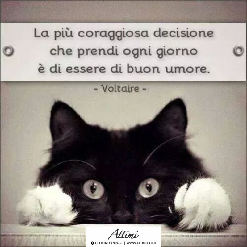 La più coraggiosa decisione che prendi ogni giorno è di essere di buon umore. ( Voltaire )