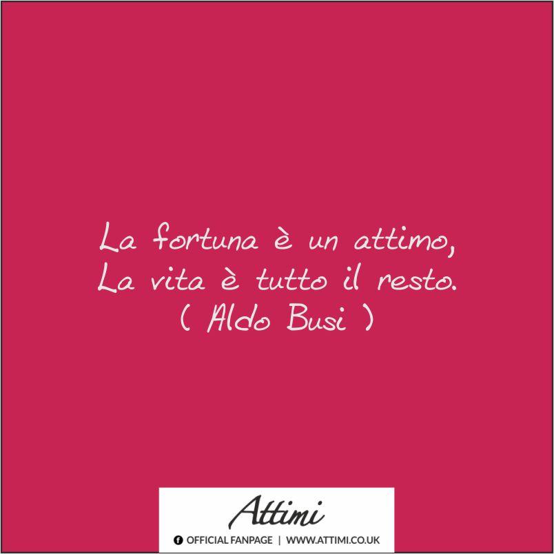 La fortuna è un attimo, La vita è tutto il resto ( Aldo Busi )