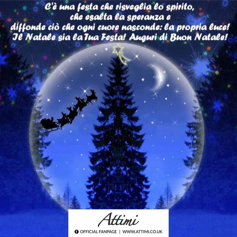 C'è una festa che risveglia lo spirito, che esalta la speranza e diffonde ciò che ogni cuore nasconde: la propria luce! Il Natale sia la tua festa! Auguri di Buon Natale!