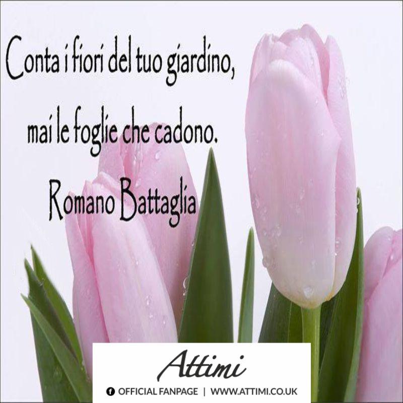 Conta i fiori del tuo giardino, mai le foglie che cadono. (Romano Battaglia)