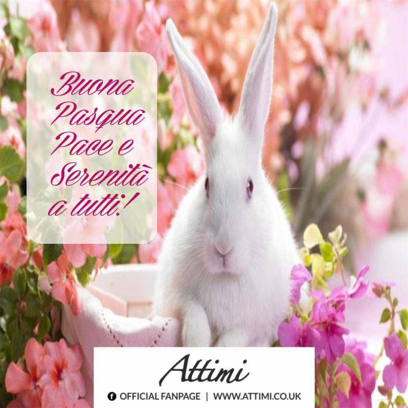 Buona Pasqua Pace e serenità a tutti!