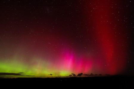 Taken by Dave Headland on March 18 2015 at Oamaru, southern New Zealand 12