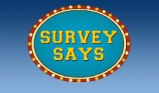 client interviews, surveys and law firm audits