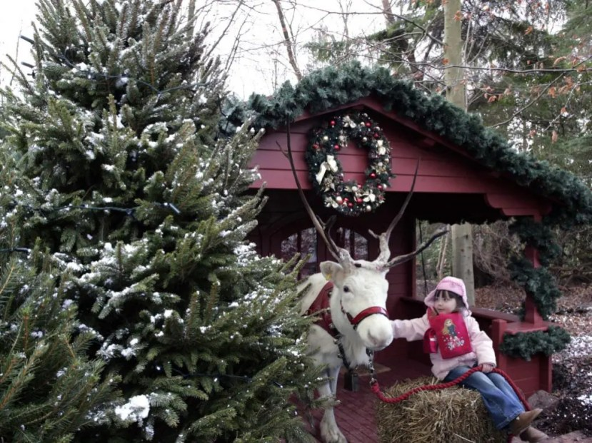 Christmas Events at UK Theme Parks