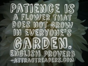 Patience is a flower that doesn't grow in everyone's garden