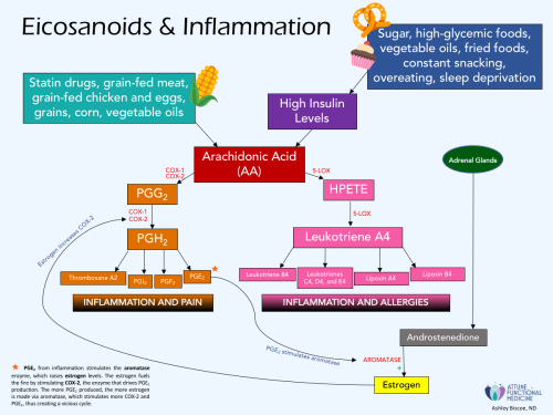 small resolution of eicosanoids and inflammation
