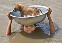 flood,flood in bihar