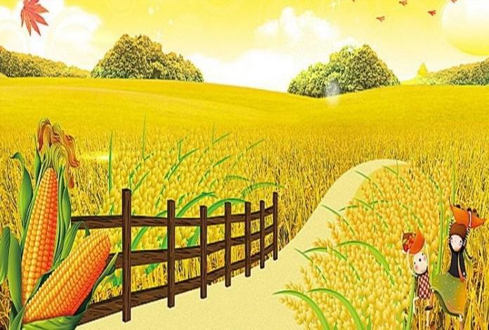 kiriniya-kahan-chali-jaale-a-bhojuri-poem-by-anirudhh-tivari-sanyog