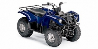 Yamaha Grizzly 125 Parts