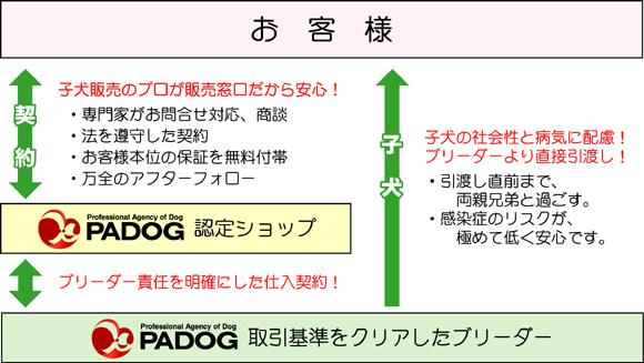 PADOG責任販売の流れ