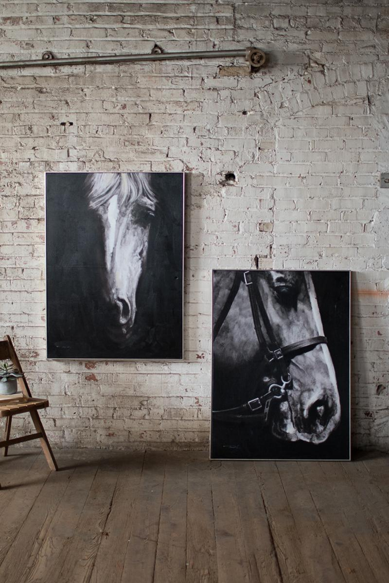 black and white horse frontal view with silver frame