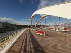 Platelage Pont Raymond Barre