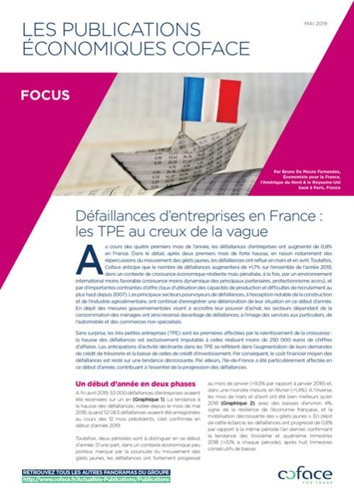 Défaillances d'entreprises en France : les TPE au creux de la vague