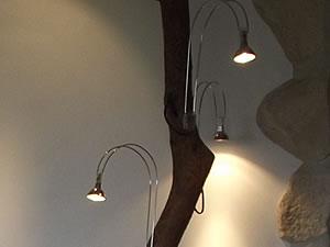 Branche de lumières