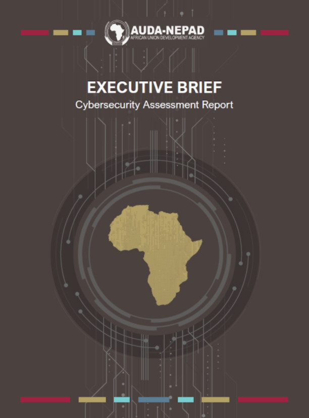Cybersecurity Assessment Report - Executive Brief