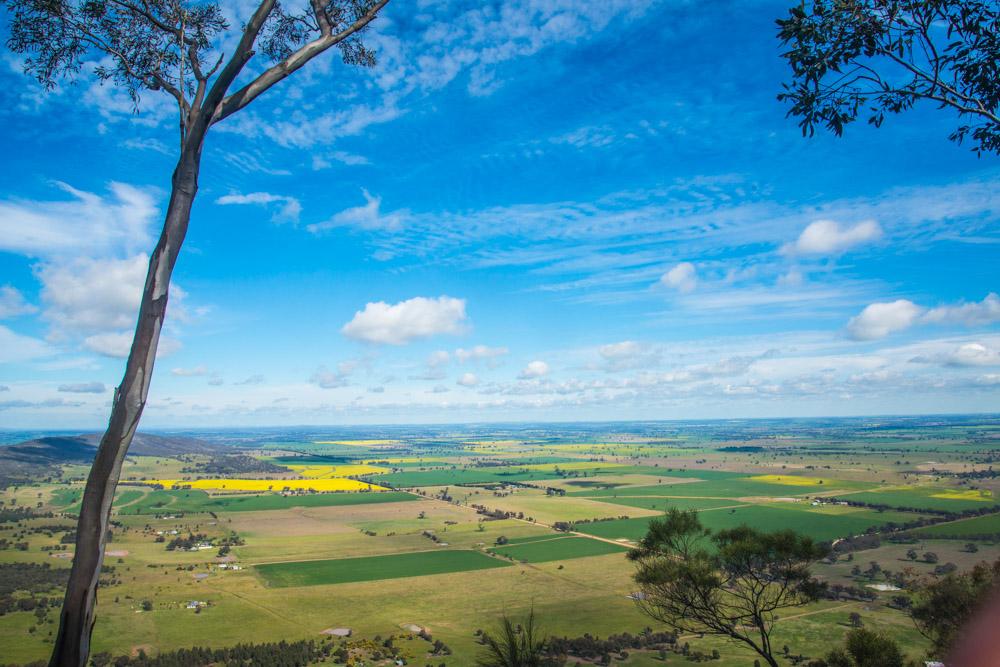Illustration de l'homme du bush australien et de l'Australie autrement
