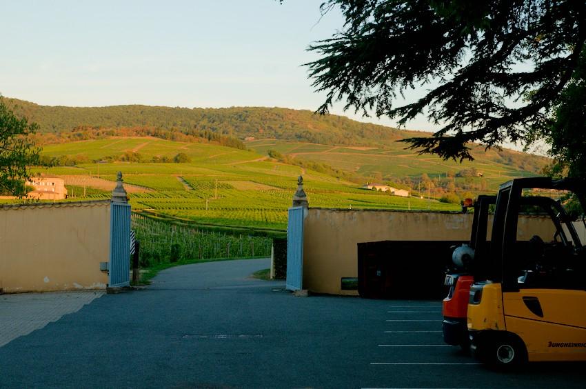 Le parking du château et les vignes du voisin, Odenas, Beaujolais