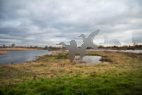 london_pass_wetland_centre