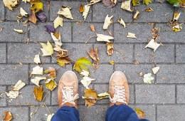 Les feuilles au sol annonce la fin de l'automne et l'éphémère de la vie