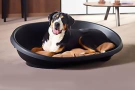 panier plastique chien corbeille
