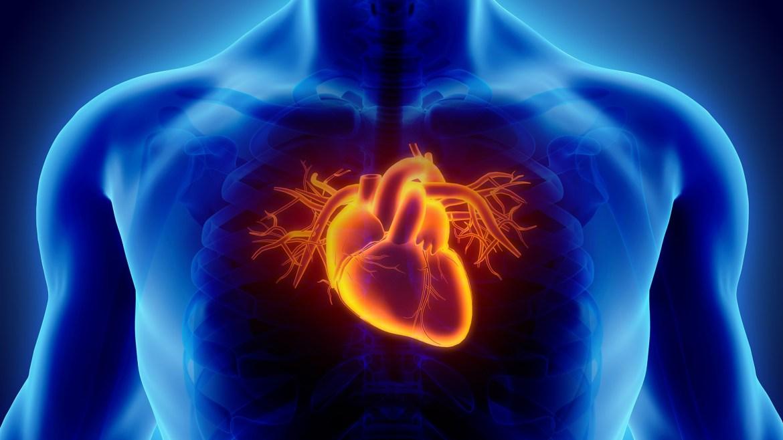 Respiration en cohérence cardiaque et pleine conscience