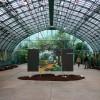 Michelle-Auboiron-expositions-Serres-d-Auteuil-Paris-2004--18 thumbnail
