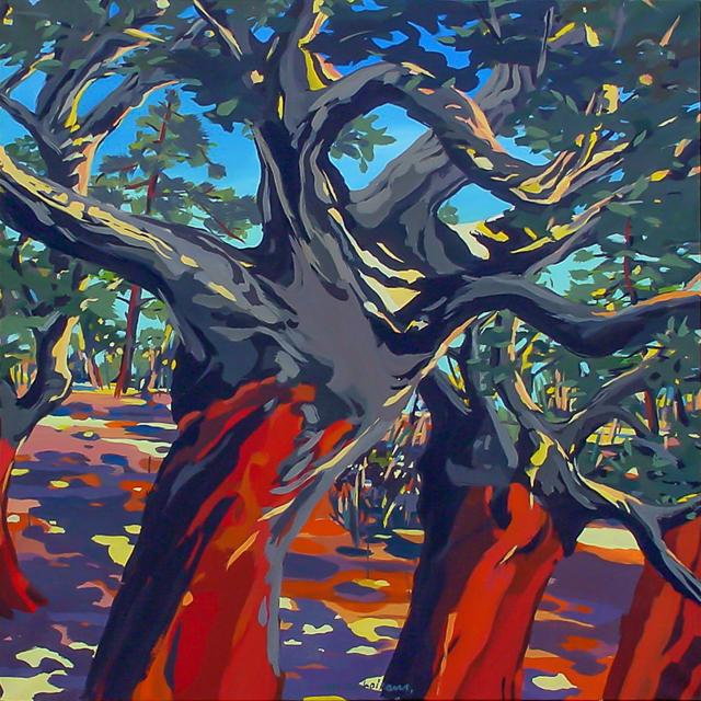 3 chênes-liège de Cala Rossa - Peinture de Corse de Michelle Auboiron