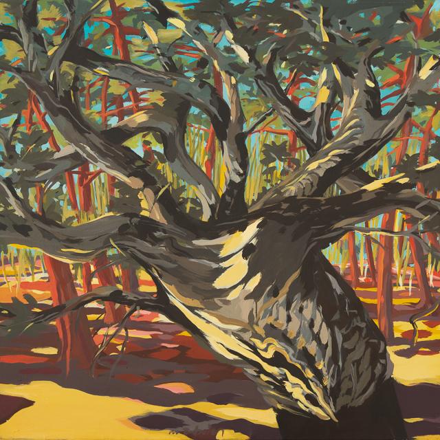 Chêne-liège à Cala Rossa - Peinture de Corse de Michelle Auboiron