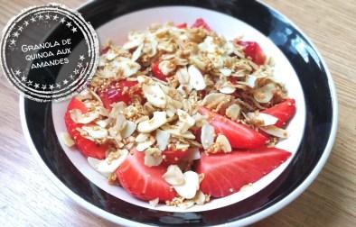 Granola de quinoa aux amandes - Auboutdelalangue.com