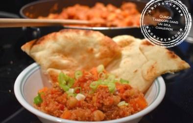 Quinoa Tandoori dans un seul chaudron - Auboutdelalangue.com
