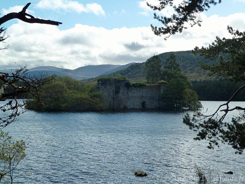 Chateau du loch Eilein