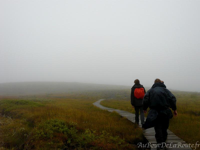 Rando dans le brouillard