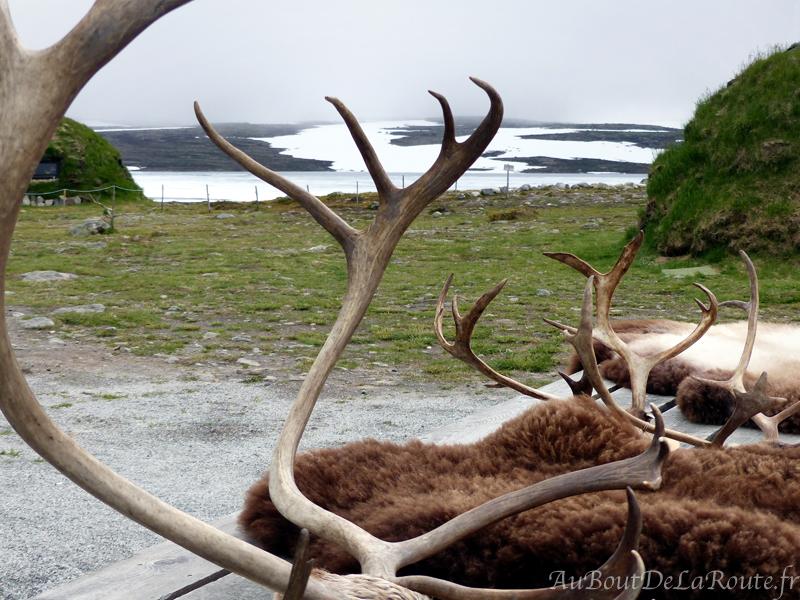 Bois&peaux de rennes