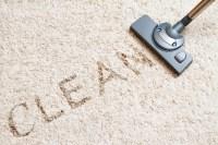 How do I maintain my carpet?